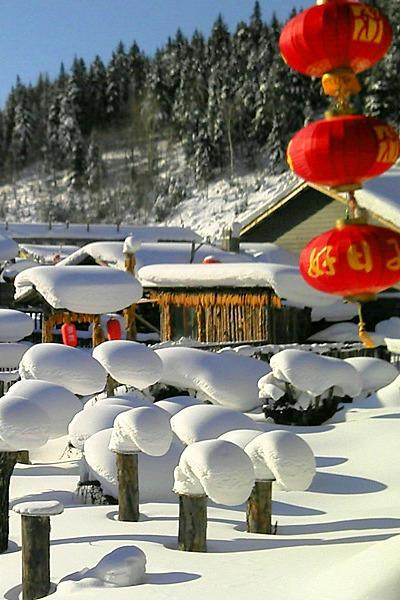 【兜峰户外】东北雪乡 哈尔滨 吉林雾凇岛滑雪泡温泉