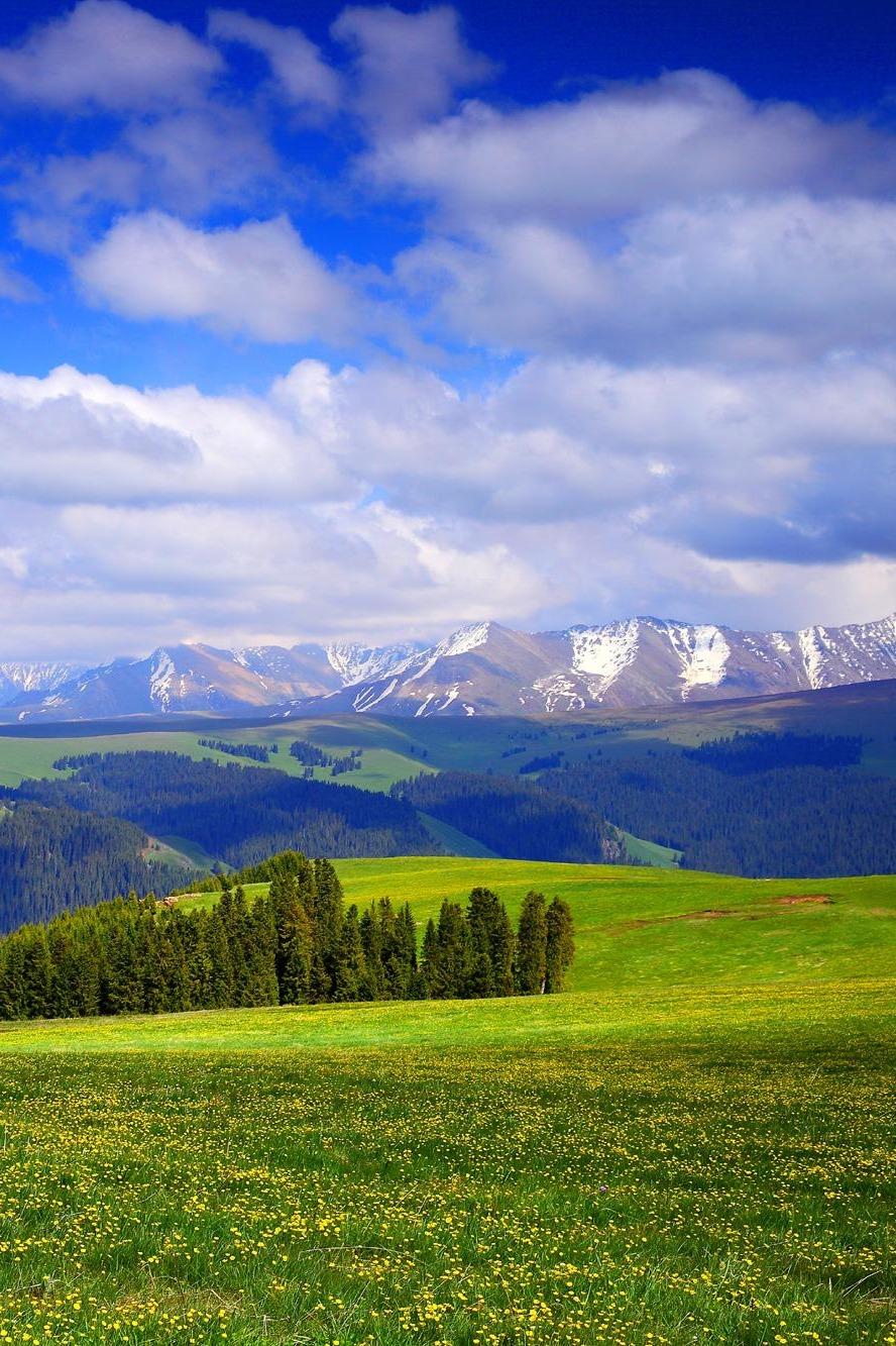 8月让我们相约新疆-喀纳斯至库尔德宁徒步穿越