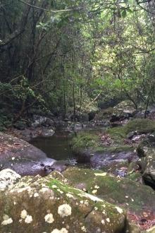 蒙山户外运动协会第十期穿越石龙冲峡谷