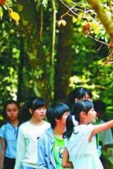 帅哥美女浪漫相约霸王岭自然保护区