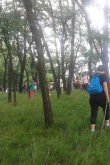 5月2日(周六)药乡森林公园休闲腐败游