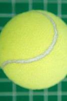 周末打网球
