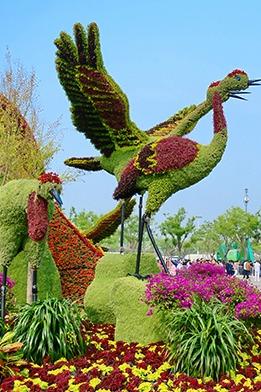 5月28日 唐山世园会-凤凰展翅
