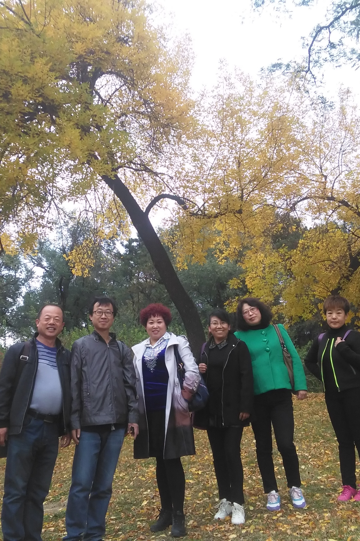 11月7日(周六)热河温泉+象鼻子山一日游110元