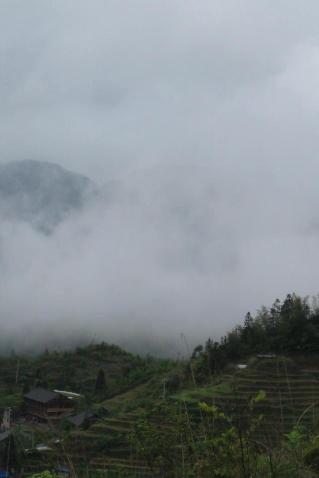 6月27日海洋乡小平乐:观美景-摘桃子—吃土鸡农家饭