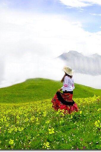 6月25-26日九顶山徒步露营赏花红草绿的世界