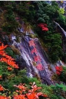11月20日大明山红叶赏秋