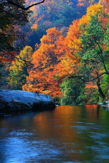 周末两天,米仓山看红叶红满天-两日赏秋自驾