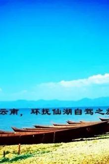 再次春游云南,环抚仙湖罗平自驾之旅【3月11-15日】