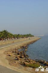(10月15)深圳红树林赏景观海野餐自然行