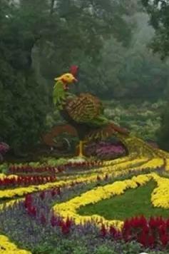 10月3日 五脑山赏菊、古乡都逛美食节