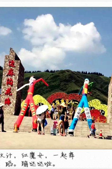 大美青海-花海藏乡摄影、休闲、亲情浪漫一日游