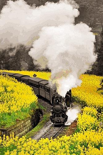 【一日游】3.13嘉阳小火车 穿过时间的隧道