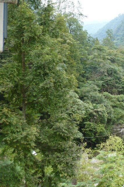 10月17日都江堰紫坪铺徒步黎明村欢乐游