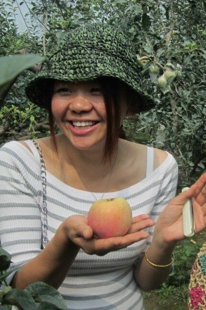 9月19-20日各一期赣榆石桥摘苹果海头吃海鲜休闲游