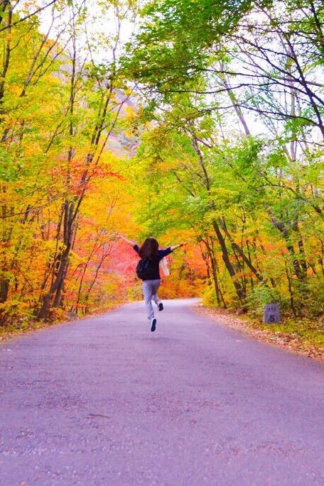 十月本溪一起赏枫叶啦,大梨树采摘观影视城!