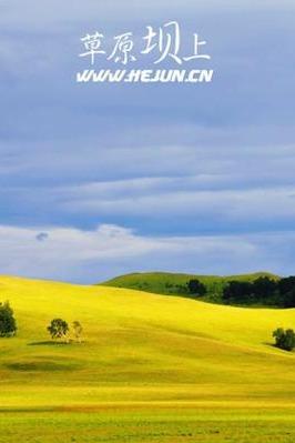 8月12-14日坝上草原骑马看流星雨