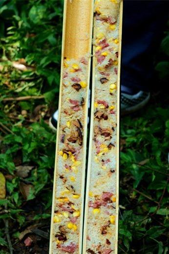 4月19日 帽峰山野炊,烧烤,竹筒饭、 爬山一天