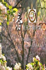 春到天大看海棠—-京津廊同城会(联合春游活动)