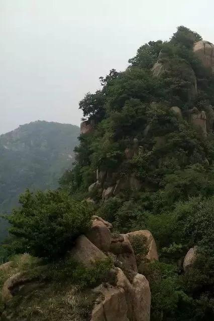 5月29日(周日)博山蛤蟆峪-三连山-玉笛峰一日游