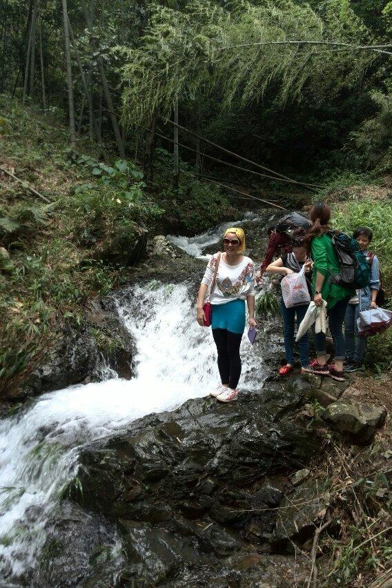 5月29日从化星溪线徒步,醉美竹林,走乡间小路