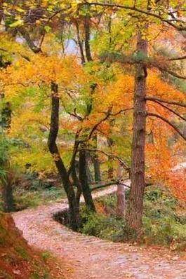 漫步宁海步道之上,感受秋天气息——宁海步道探路2期