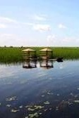 富锦湿地一日游