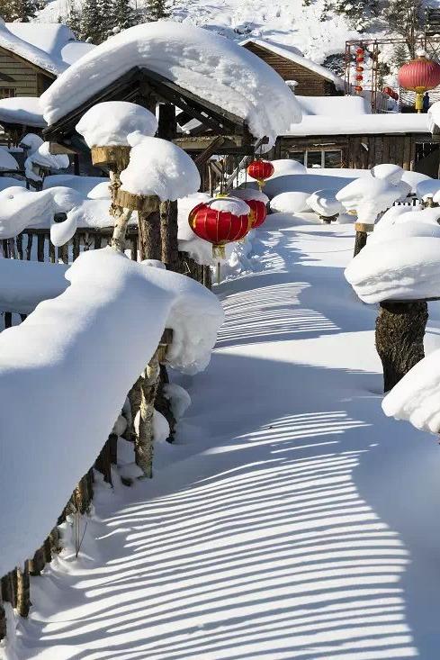 1月2日雪乡2日游