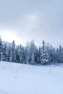 雪乡三日游