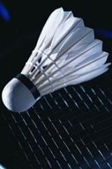 每周一,四新区打羽毛球(长期活动)