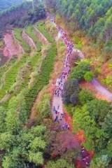 徒步:11月8日潮安坪溪茶园万亩梯田凤凰最美古村落活动