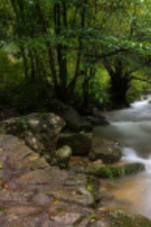 金珠源大峡谷+幽簧里+太平湖水上栈道一日游