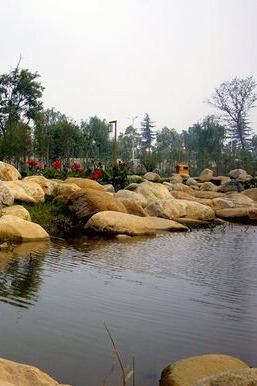 5.17(周日)带着家人好友去湿地撒欢吧!