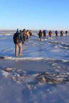 【新春】与天鹅伴舞,探秘湖心岛——青海湖冰面穿越