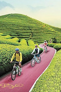 龙池山自行车公园绿道+龙池山至竹海穿越