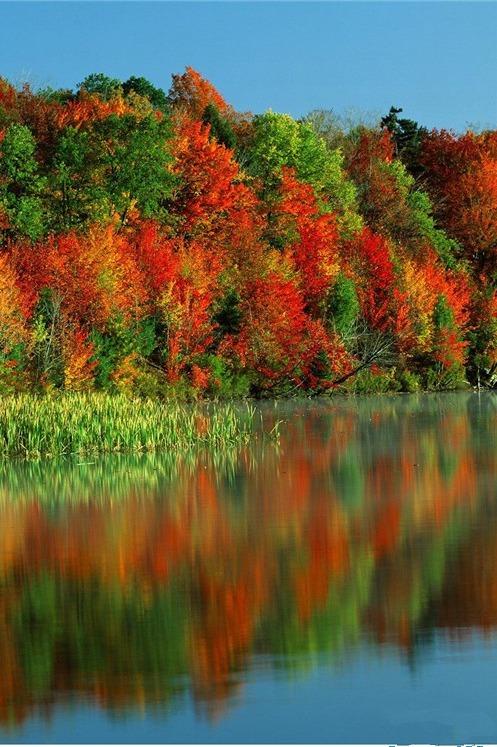 【周末】美在金秋—毕棚沟、米亚罗红叶2日游