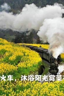 坐上世界绝版小火车踏春了