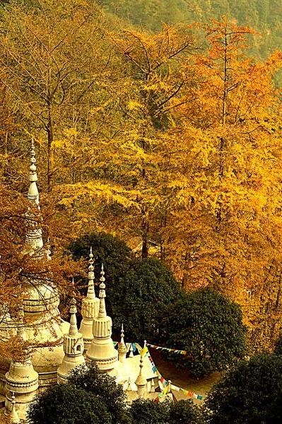 文锦江穿越白岩寺