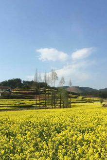 4月16日周六看花遛山 植物园~气象山
