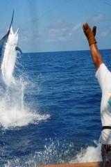 钓鱼比赛-