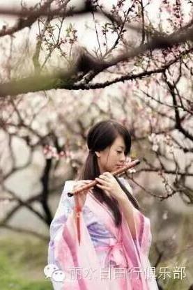 3月27日赏万亩桃花朵朵开 游梦幻仙境缙云仙渡桃花