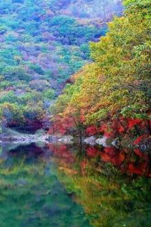 10.2丹东蒲石河森林公园赏最美枫叶美拍一日游活动