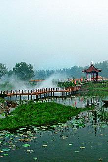微山湖一日游!138
