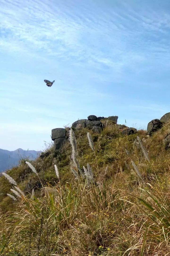 1月8日(周天)昆仑镇仙女峰徒步穿越一日游