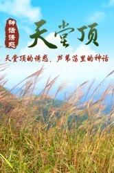 98元特价 丨11月20日挑战广州第一峰从化天堂顶