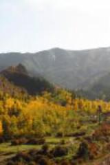 大通呱拉峡徒步观赏秋色,两边红叶满山,