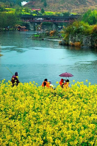 """走进中国最美的乡村""""婺源"""""""