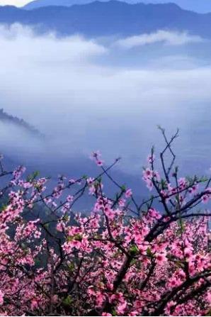 3月21日(星期六)2015临海第七届括苍山桃花节