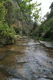 威远石板河一日游