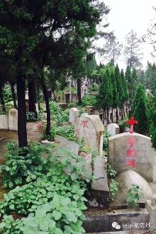 樟树林娱乐聚集地!墓地撕名牌震撼来袭!